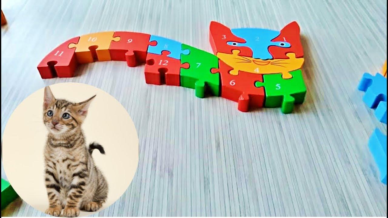 Puzzle Yapboz Oyunları Sayıları öğreniyorum Yapboz Yapboz Oyunu