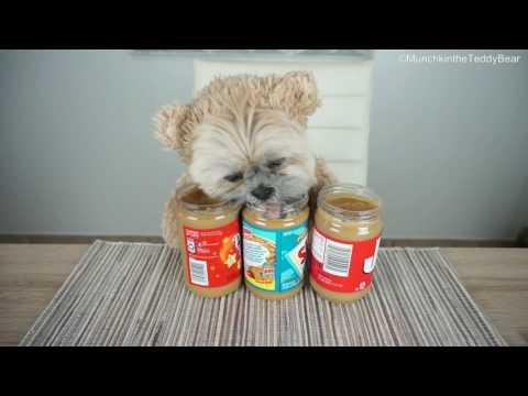 Munchkin LOVES peanut butter!