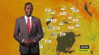 Forecast for 29/11/2018