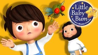Learn with Little Baby Bum | Skip to My Lou | Nursery Rhymes for Babies | Songs for Kids