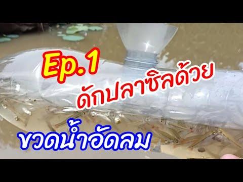 Ep.1ดักปลาซิวด้วยขวดน้ำอัดลม/P&39;nan channel