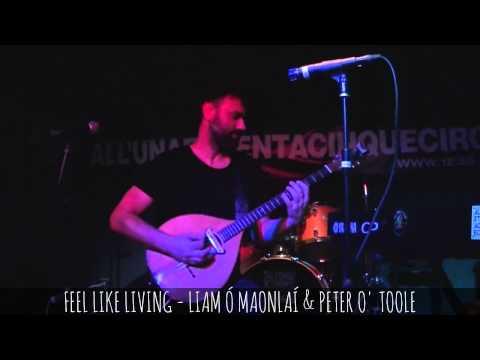 FEEL LIKE LIVING - LIAM Ó MAONLAÍ & PETER O' TOOLE live@1e35circa, Cantù - 2014 feb.10