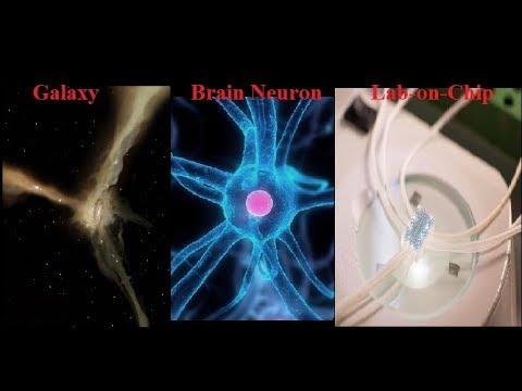 OUR AMAZING Universe is Organized like a Brain Net, Sensor Net, Comm Net, Internet !
