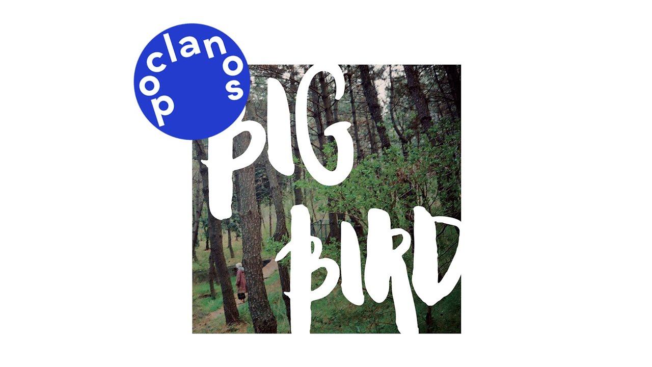 [Official Audio] 다린 (Darin) - 큰새 (Big Bird)