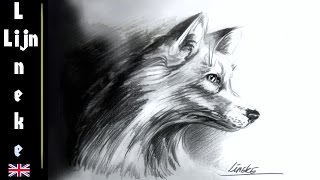 How to draw a Fox / animal drawings / #46