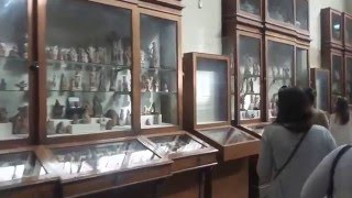 видео Египетский национальный музей