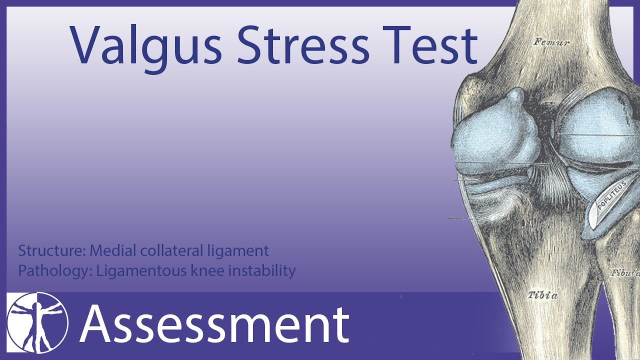 Valgus Stress Test Medial Collateral Ligament Youtube