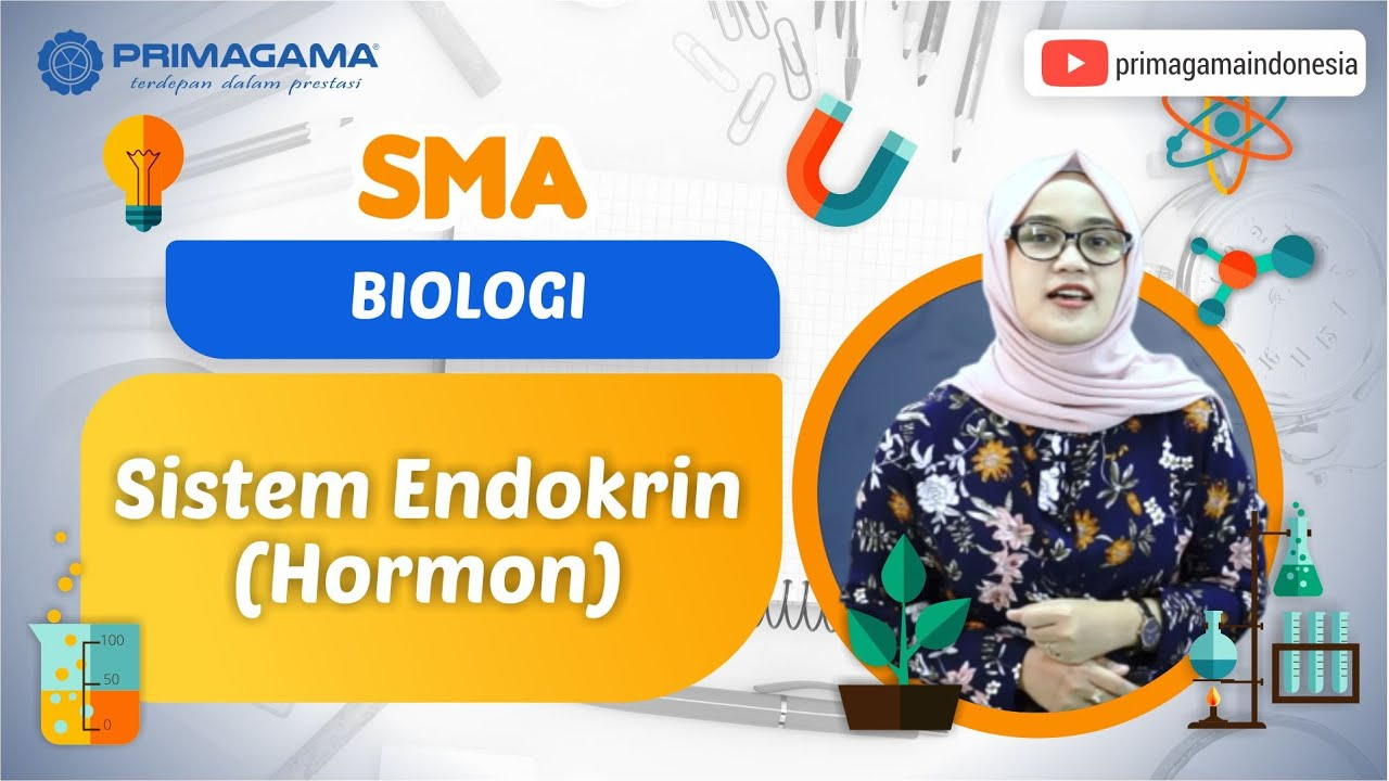 Video Pembelajaran | SMA | Biologi | Sistem Endokrin…