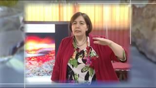 Лекция Екатерины Тесаковой ''Геологическая история Москвы''