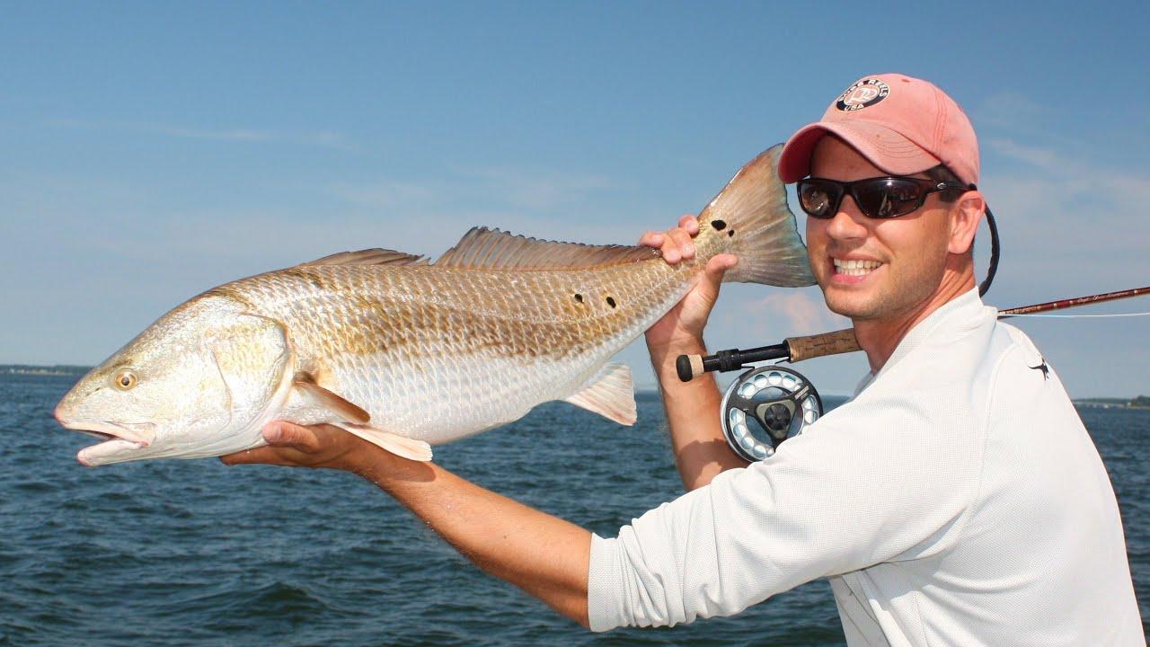 september slammin' - fly fishing & light tackle fishing on the, Fishing Bait