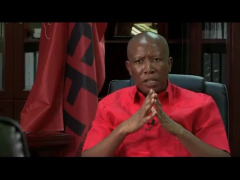 'Any fool can be a president' - Julius Malema