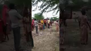Rajasthan news Pali Jila