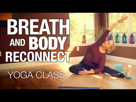 Breath & Body Reconnect Yoga Class - Five Parks Yoga