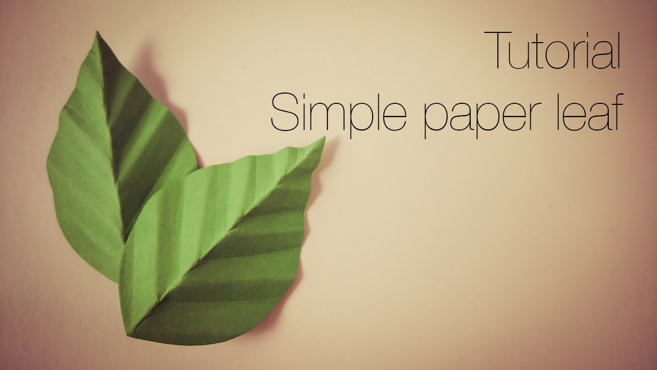 paper leaves One of the sheets of paper in a book 5 a hinged, sliding, or some leaves are simple, while others are compound, consisting of multiple leaflets.