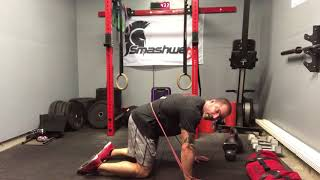 The Best Core Routine for Low Back Pain | Trevor Bachmeyer | SmashweRx