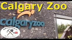 Calgary Zoo Visit June 2016