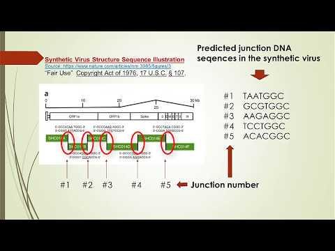 DNA Sequence Similarity Of A Synthetic Coronavirus Vs. Wuhan Coronavirus