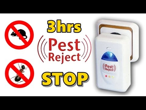 Sound to scare away rats, dogs, mosquitoes, bugs