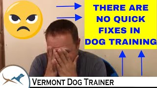 Dog Trainer Daily 149: GETTING SMART & QUICK FIXES