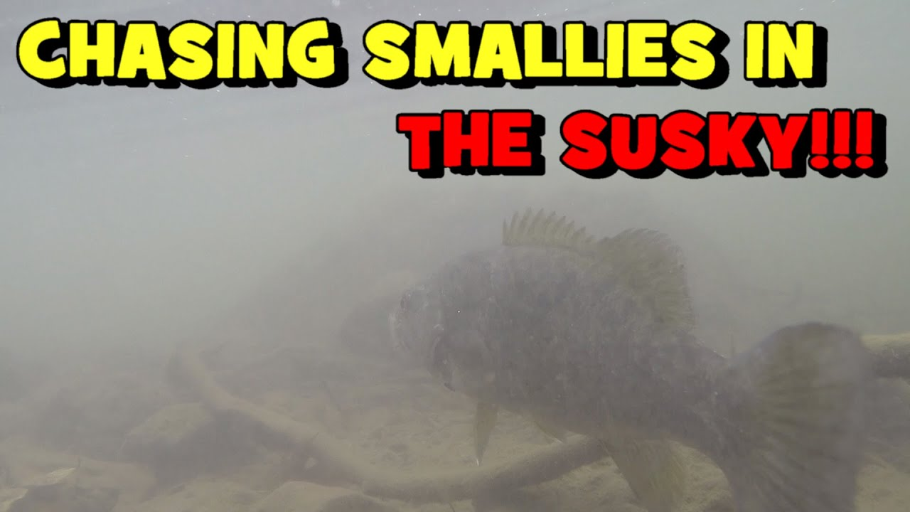 Chasing SMALLIES in The SUSQUEHANNA RIVER!!! (CATCH LOG)