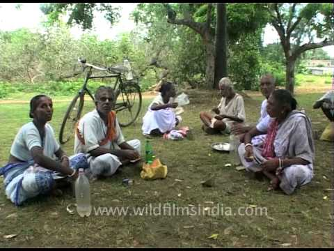 Old people having lunch break in a park, Orissa