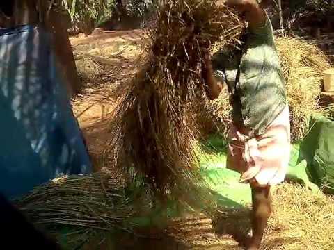 Natural agricultural