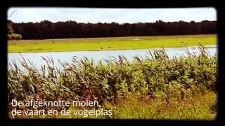 Kijktocht Delftse Hout   Groep 7b - Prins Mauritsschool Delft  