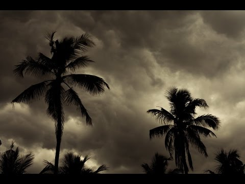 Strong Monsoon Season in India Expected To Boost Gold Demand