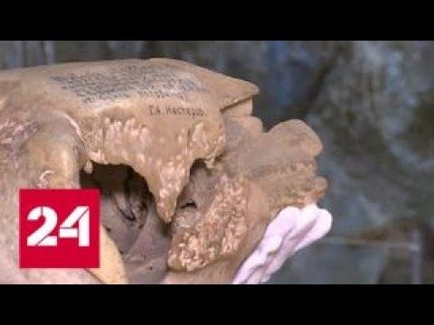 На Командорских островах обнаружили целый скелет исчезнувшей стеллеровой коровы - Россия 24
