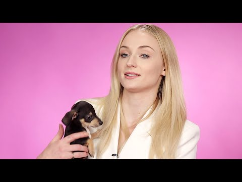 Sophie Turner Plays With Puppies While Answering Fan Questions