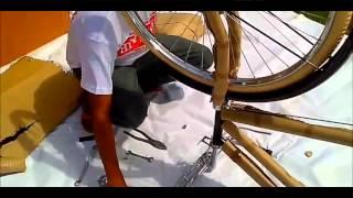 Biciclassiche