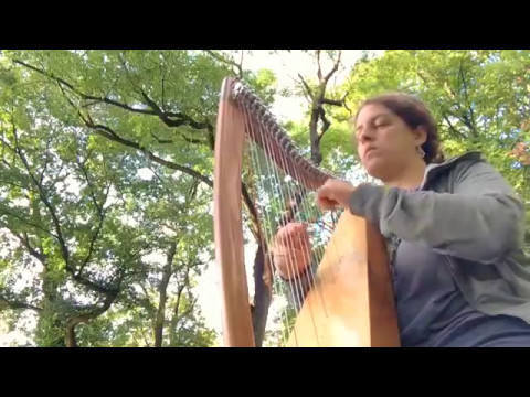 Rain | Celtic Harp Instrumental | Travel Harp Therapy Harp Lewis Creek Jessie