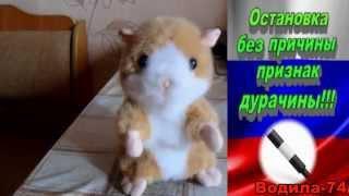 Шторки Нельзя.ДПС Челябинск.(, 2015-11-30T17:55:05.000Z)