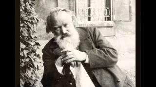 Brahms Symphony No.3 (1st movement)