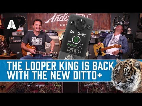 New TC Electronic Ditto+ | The Iconic Mini Looper Pedal, Now With Next-Level Upgrades!