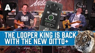New TC Electronic Ditto+   The Iconic Mini Looper Pedal, Now With Next-Level Upgrades!