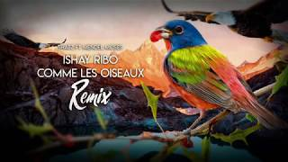 Ishay Ribo - Comme les oiseaux - Shatz ft. Mendel Moses (Remix)