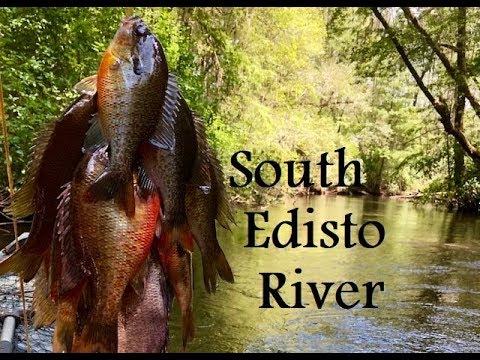 Kayak Fishing The South Edisto River