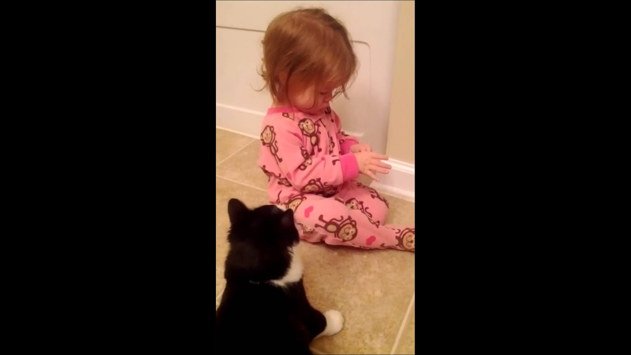 Cat Attacks Baby *must See*