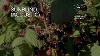 "Fleet Foxes - ""Sunblind"" (Acoustic Version) (Lyric Video)"