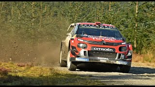 CITROEN RACING Testing for Wales Rally GB 2019   Eric Camilli