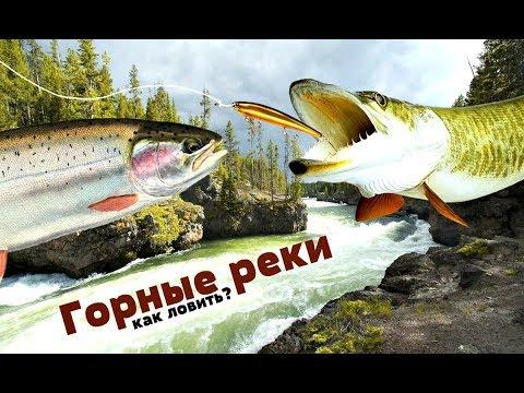 Как-ловить-рыбу-на-горной-реке-спиннингом?-Какая-рыба-водится-в-горных-реках?