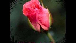 LA İLAHE İLLALLAH -Kaside-Ahmet Çalışır 2017 Video