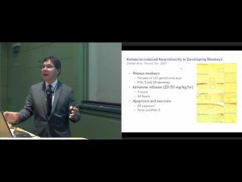 Neurotoxicity in Anesthesia, Prof. Soriano Boston
