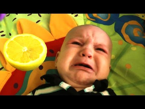Baby Eats Lemon - A Babies Eating Lemons For The First Time Compilation 2016 || NEW HD