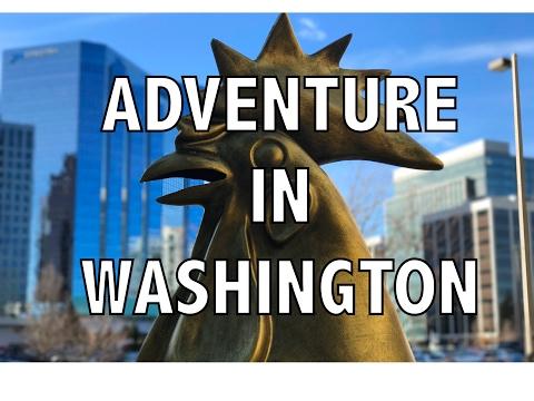 Tourist for the Day | Bellevue WA Adventure