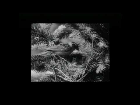 Sherlock Holmes - Silent Film 1922
