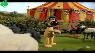 Shaum the Sheep - Big Top Timmy   الخروف شون - خيمة السيرك الضخمة