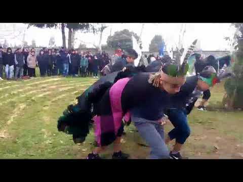 LICEO AGRICOLA CHOL CHOL - WIÑOY XIPANTU 2018
