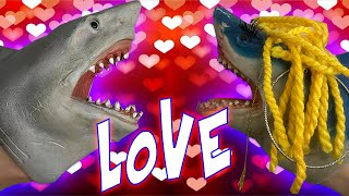 SHARK PUPPET FALLS IN LOVE ON VALENTINES DAY!!!!!